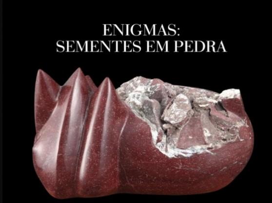 """Exposição """"Enigmas: sementes em pedra"""" segue até dia 20 na Casa das Artes"""