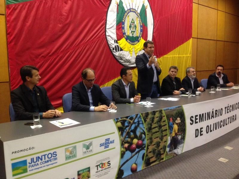 Seminário debate aspectos técnicos da olivicultura