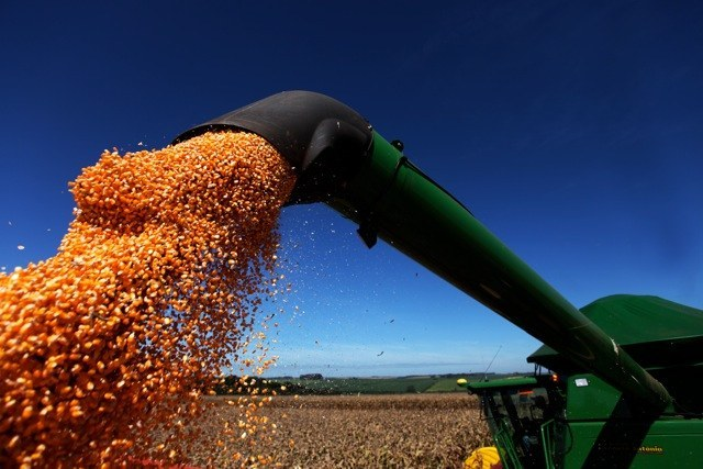 Governo faz ajustes nas regras do Programa de Seguro Rural para o próximo ano Gestão de Riscos
