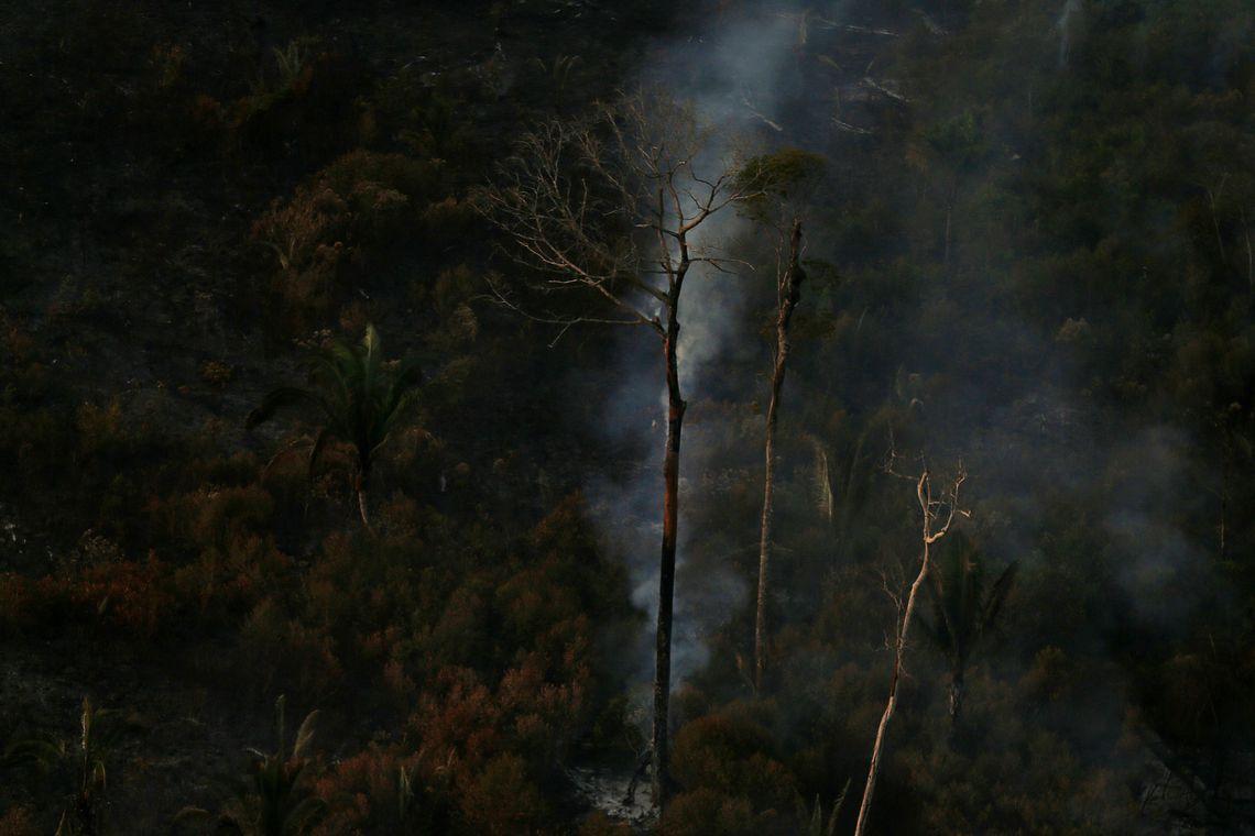 Procuradoria e AGU anunciam acordo de R$ 1 bi para Amazônia