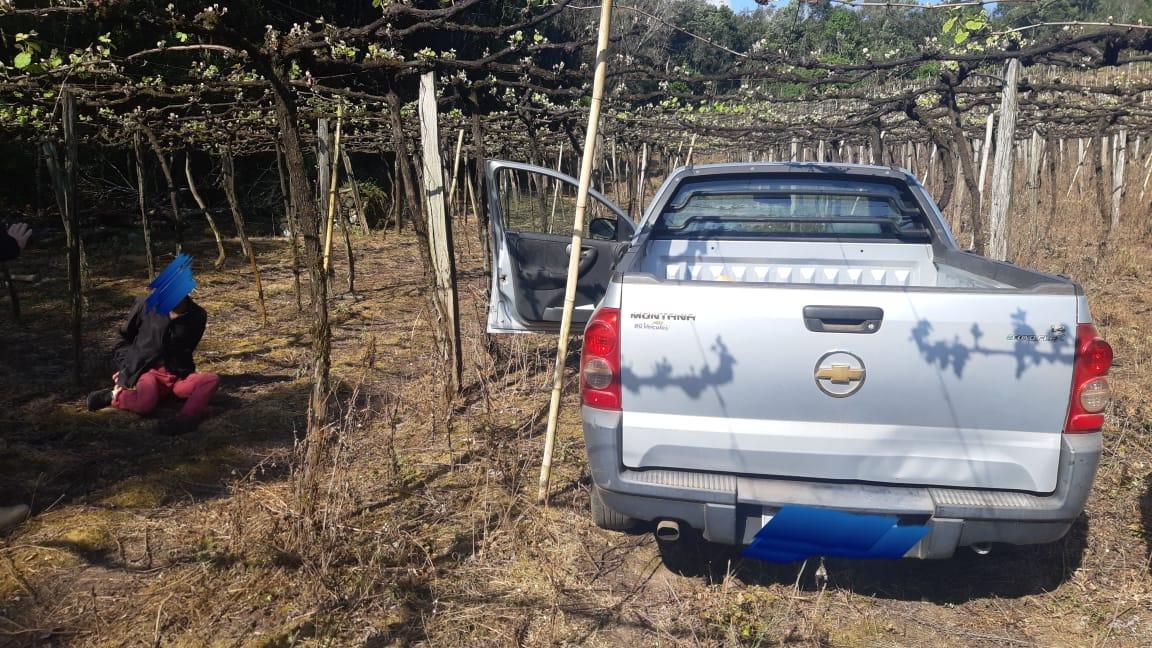 Motorista em veículo irregular foge da PRF e é detido após parar em parreiral em Bento