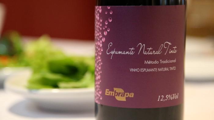 Embrapa Uva e Vinho apresenta lançamentos na Wine South America
