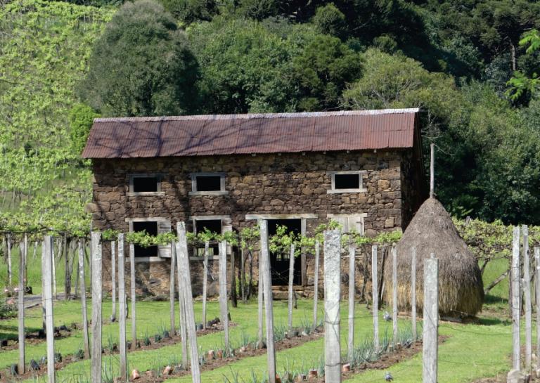 De colonos do vinho a agricultores do turismo: mestre em História apresenta livro sobre sua pesquisa