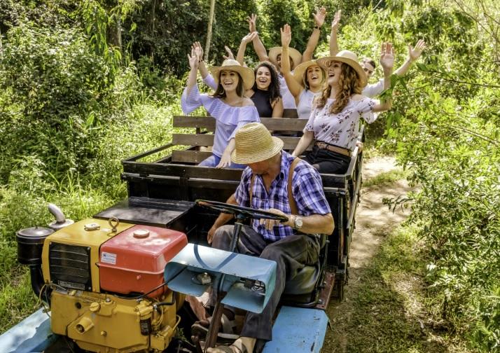 Giordani Turismo oferece experiências no período da Vindima