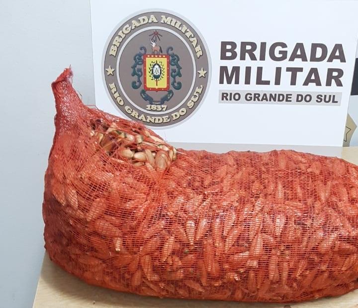 Brigada Militar prende trio por invasão de propriedade rural em Vacaria