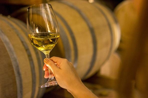 Venda de vinhos finos tem desempenho positivo em fevereiro