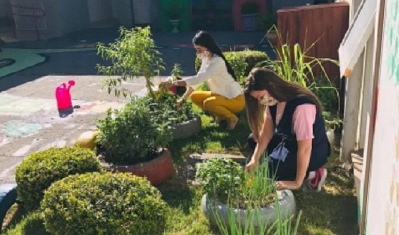 SMDA realiza projeto em parceria com a Escola Municipal Infantil Mamãe Coruja