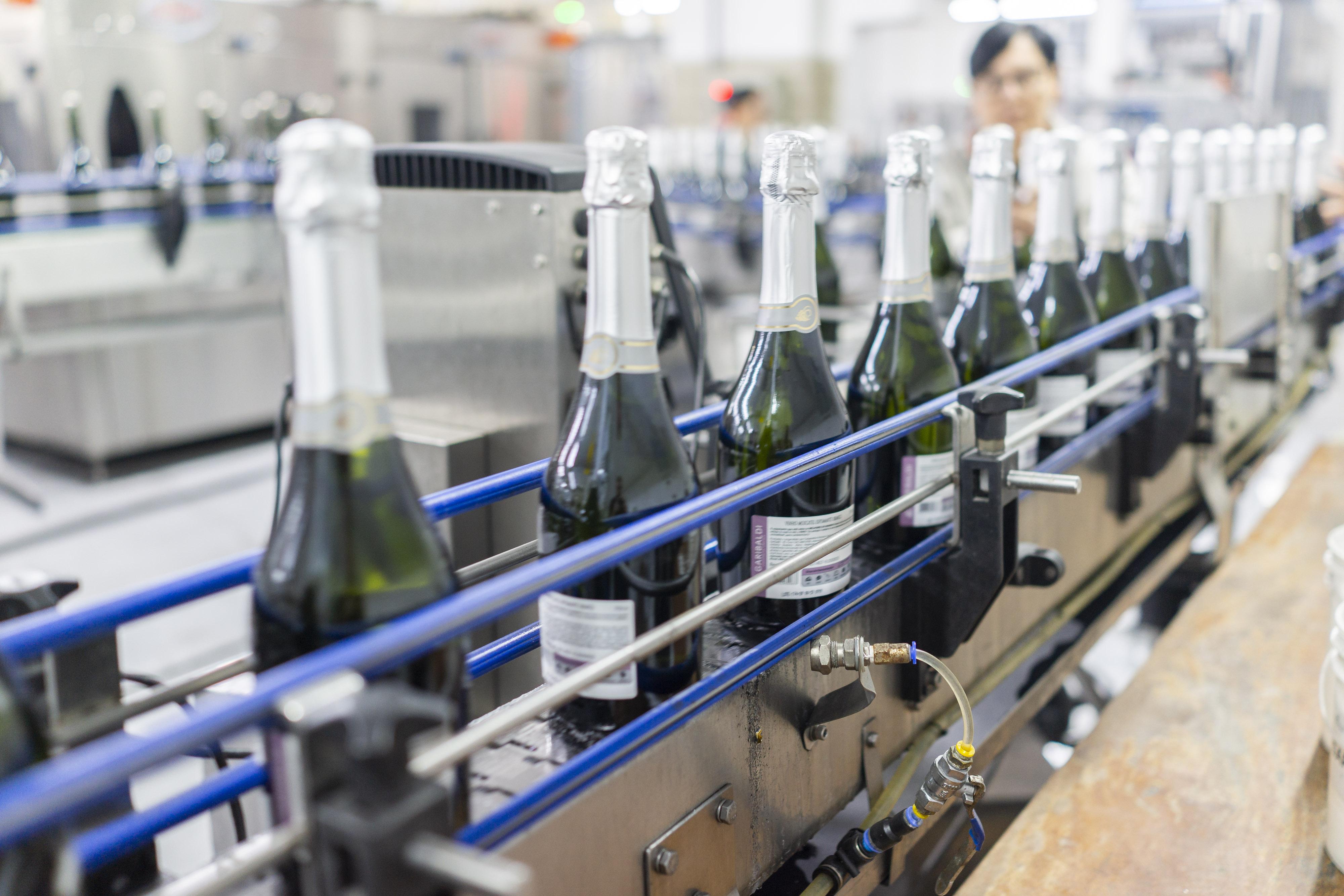 Primeiros produtos da safra 2021 da Cooperativa Vinícola Garibaldi chegam ao mercado