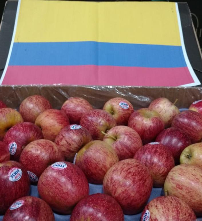 Brasil recebe sinal verde para exportar maçãs para a Colômbia