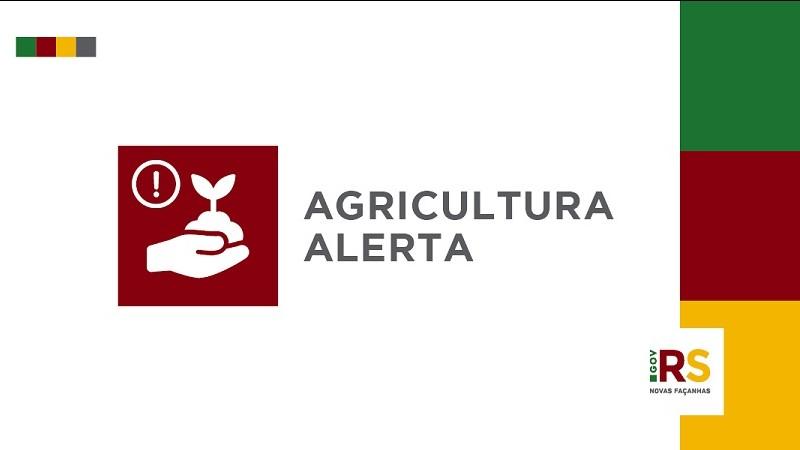 Secretaria da Agricultura destaca ocorrência de nova onda de golpes