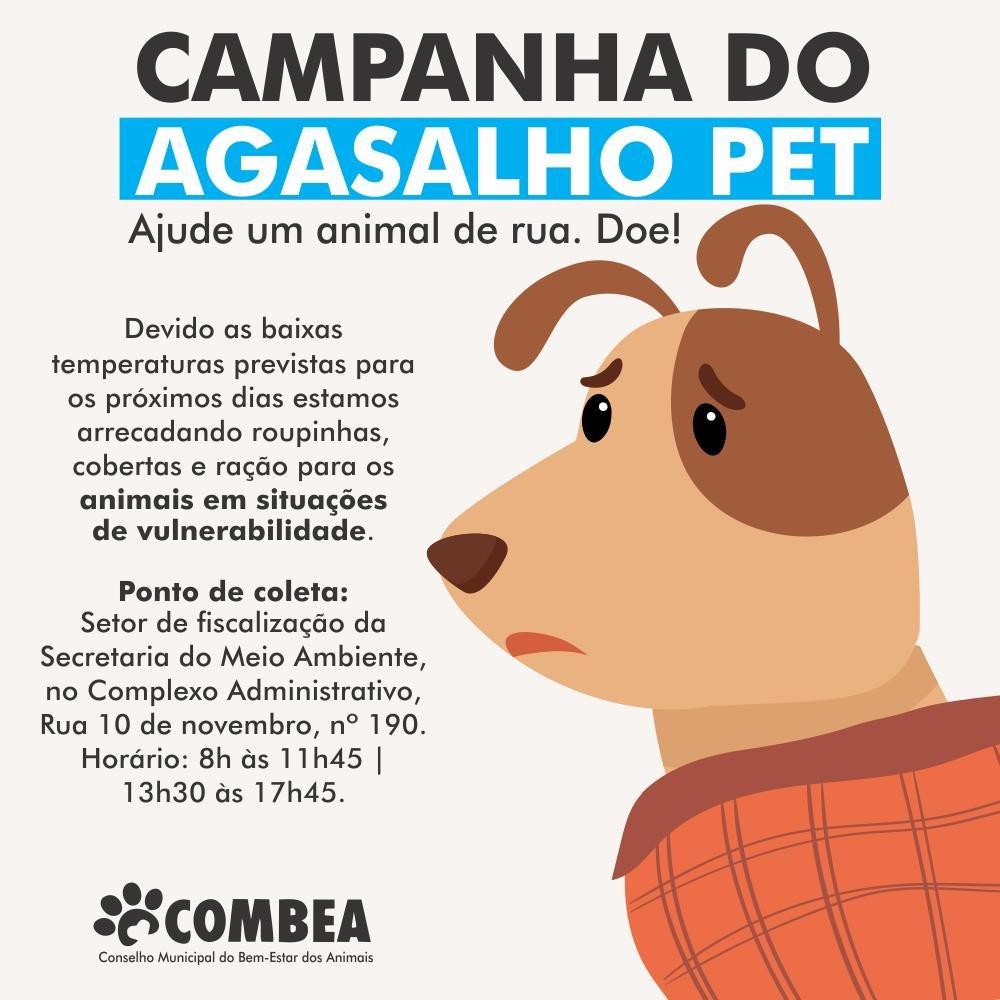 COMBEA realiza campanha do agasalho para cães e gatos, em Bento
