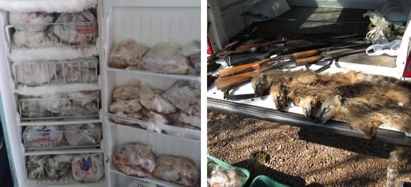 3º BABM realiza prisão por maus tratos, por ilegal de arma e caça de animais em Caxias